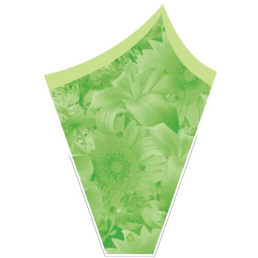 Grace- Green Sleeve