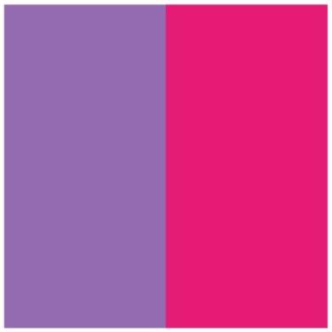 Twin- Hot Pink/Purple Sheet