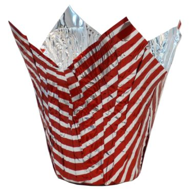 Winter Red Striped Pot Cover