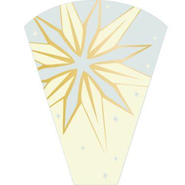 Starlit- Gold Sleeve