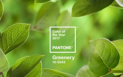 THE YEAR OF GREENERY